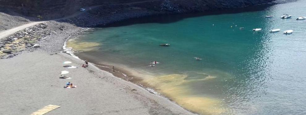 Edicto: Presencia de MICROALGAS en la Playa de Vueltas